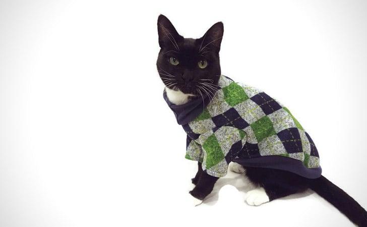 Argyle Cat Sweater