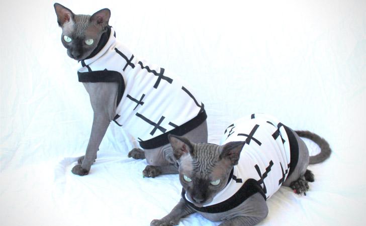 Bad Kitty - Summerweight Cat Shirt