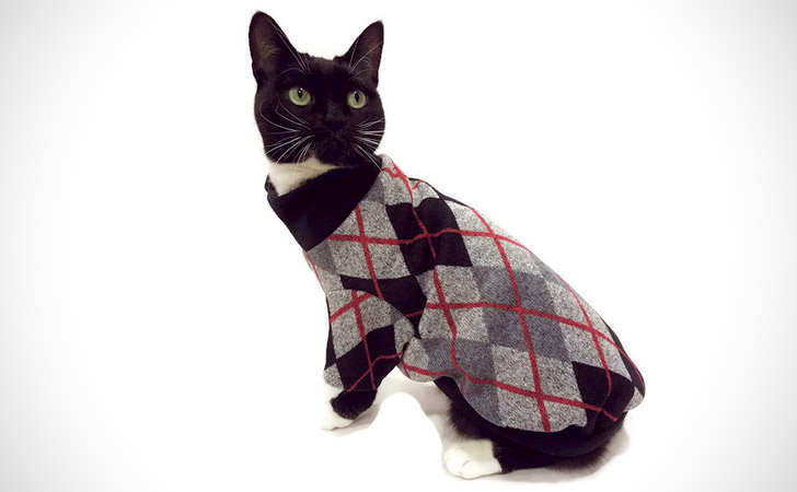 Black And Gray Cat Sweater