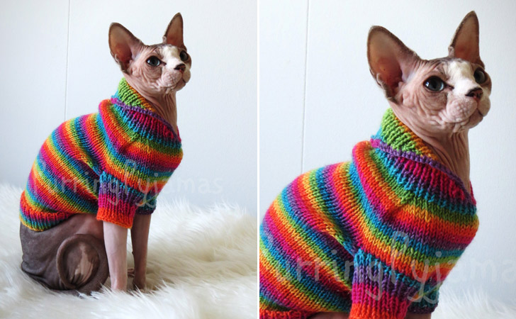 Colorful Striped Winter Cat Sweater