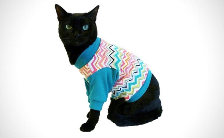 Colorful Teal Chevron Knit Cat Shirt