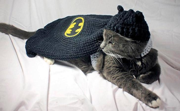 Crochet Batman Cat Costume