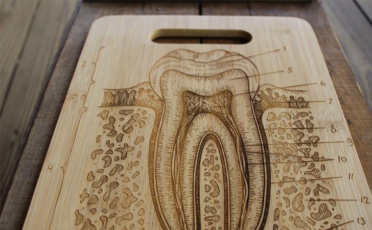 Dental Illustration Cutting Board