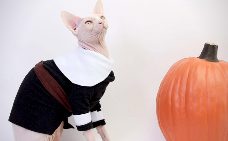 Fleece Pilgrim Cat Costume