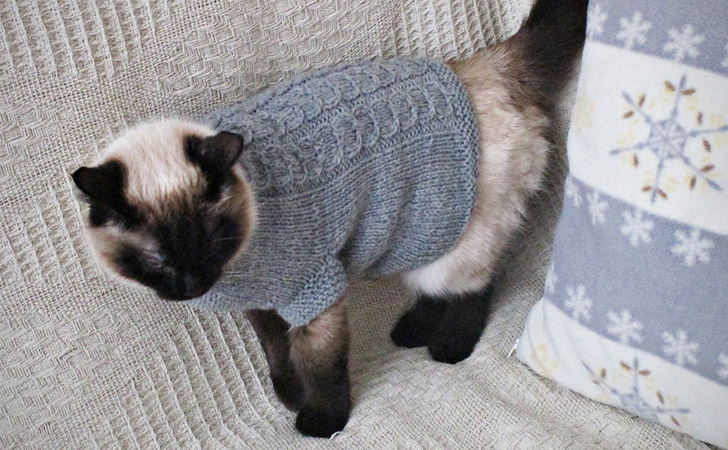 Hand Knitted Cat Jumper