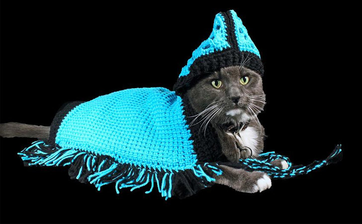 Handmade Cat Poncho