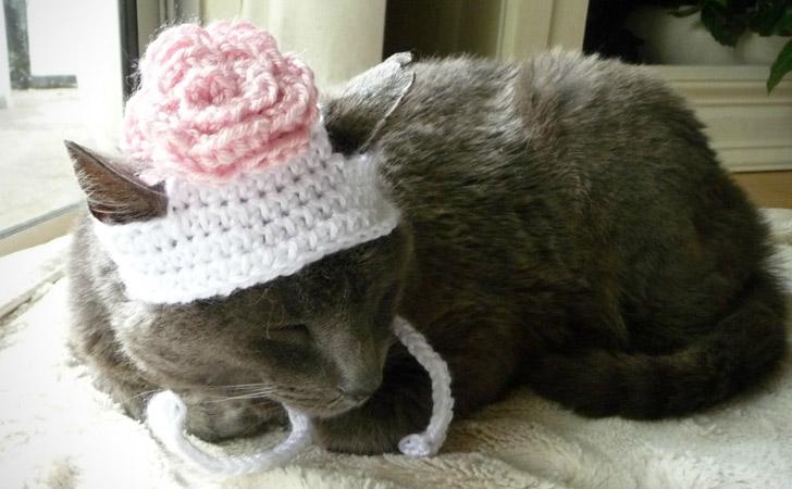 Handmade Flower Cat Hat
