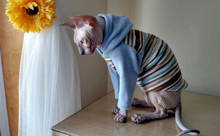 Handmade Stretch Pajama Hoodie