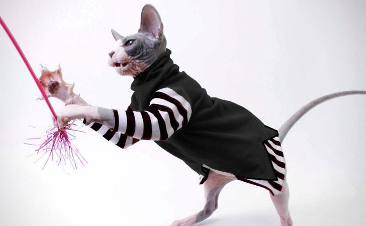 Long Sleeved Cat Coat
