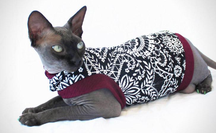 Marooned - Designer Cat Shirt