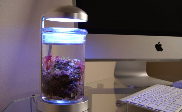 Miniature Saltwater Aquarium Lamp
