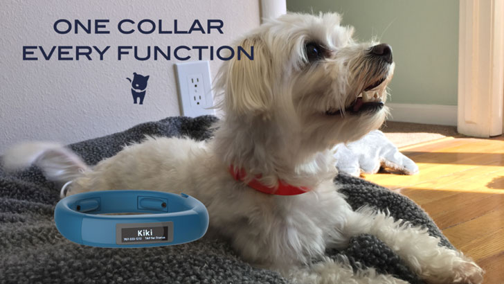 Multi-Function Smart Pet Collar