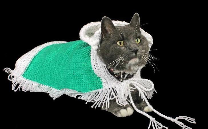 Original Design Handmade Cat Poncho