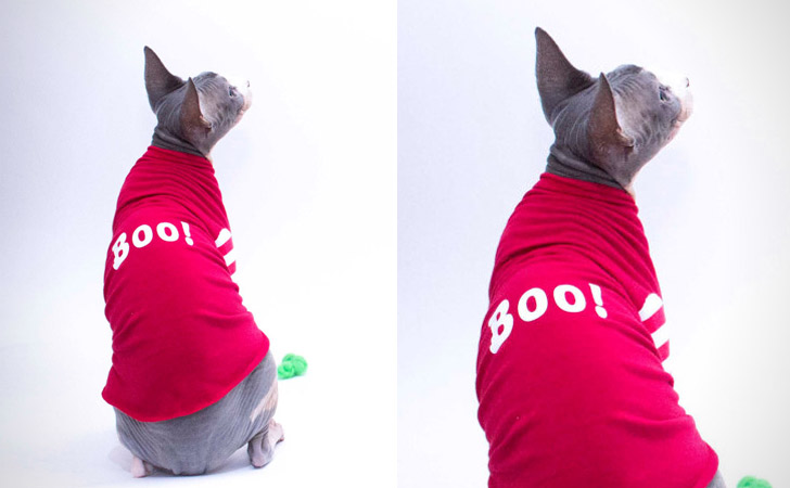 Red Boo! Striped Cat Shirt