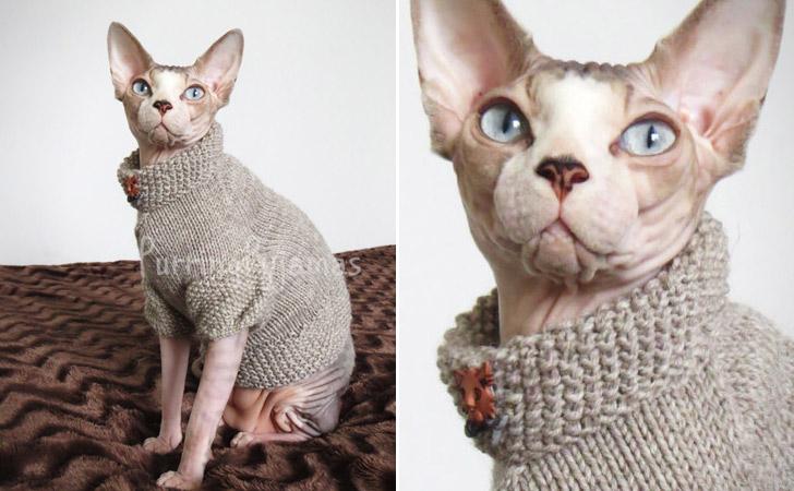 Rustic Handmade Cat Sweater