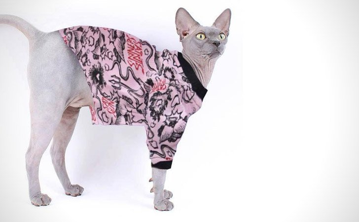 Saints and Sinners Pattern Cat Pullover