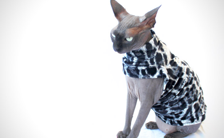Silver Leopard Designer Cat Shirt