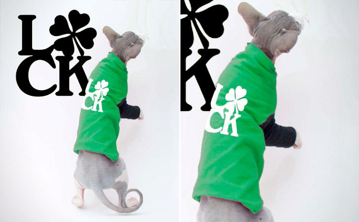 St Patrick's Day Theme Cat Sweater