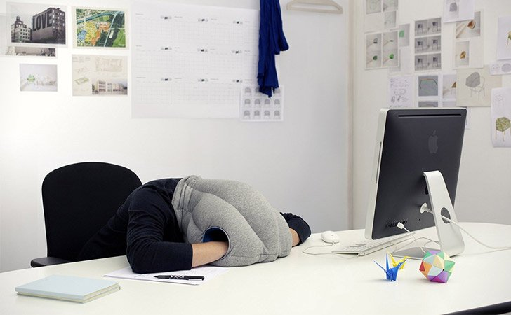 The Ostrich Nap Pillow