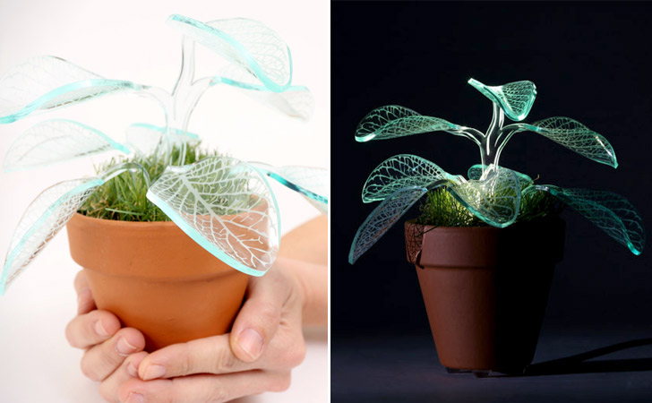 Transparent Leaves Plant Night Light