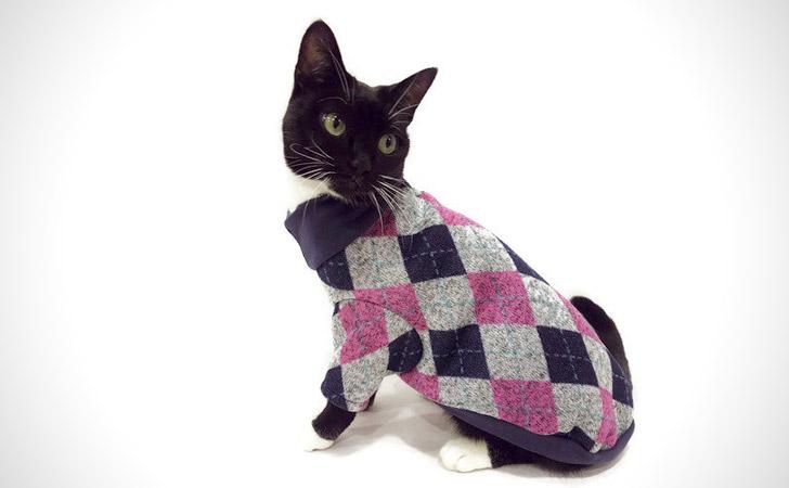Trendy Argyle Cat Sweater