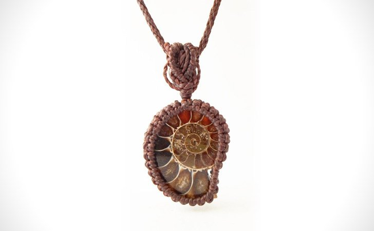 Ammonite Fossil Shell Necklace