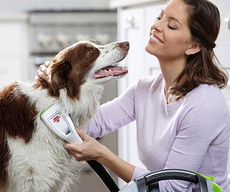 Bark Bath Portable Dog Bathing System