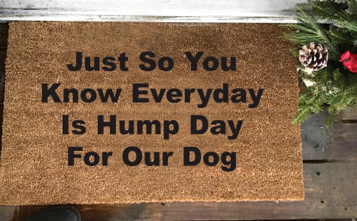 Every Day Is Hump Day Doormat - funniest doormats