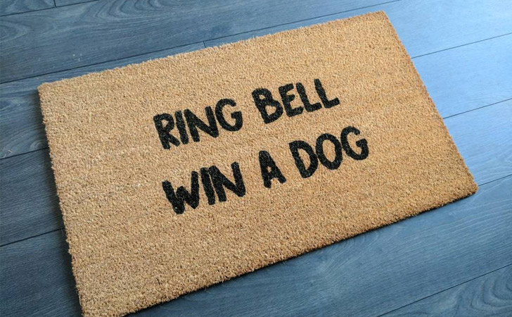 Ring Bell Win A Dog