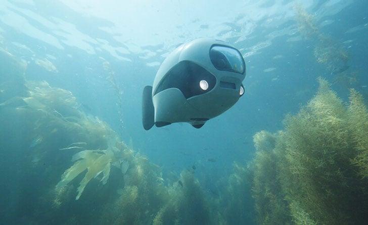 Bionic Underwater Fish Drone