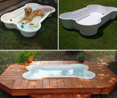 Bone Shaped Dog Pool