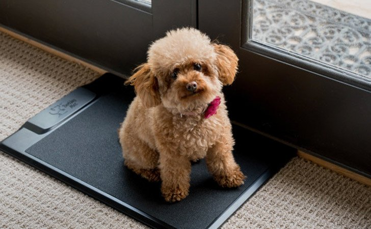 Dog's Training Barking Mat