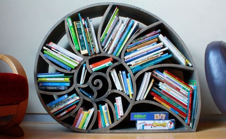 Nautilus Bookshelf   Cool Bookshelves