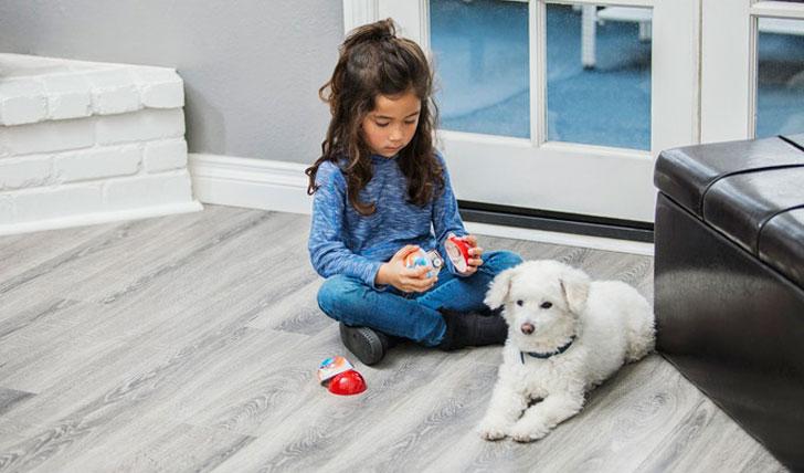 Pebby Smart Ball for Pets