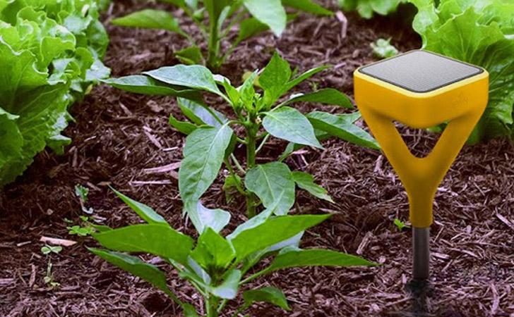 Wi-Fi Garden State Tracker