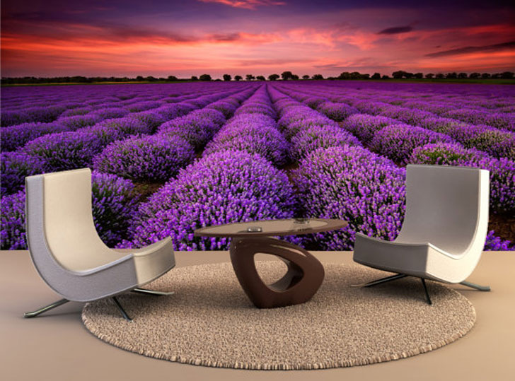 Lavender Fields Wall Decal