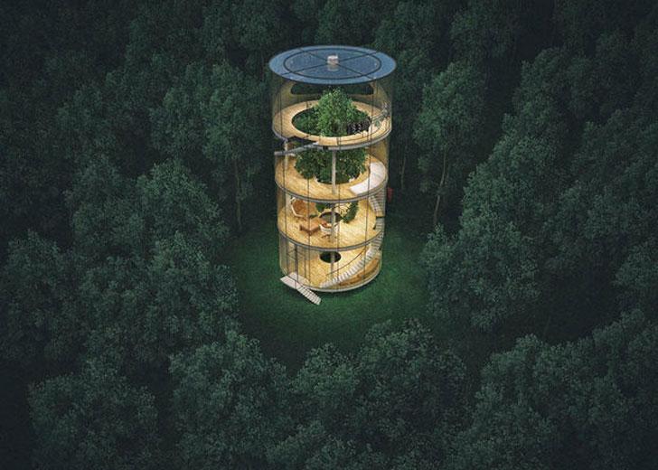Tubular Glass Tree House