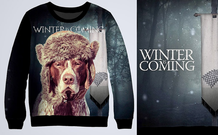 Winter Is Coming Funny Hoodie