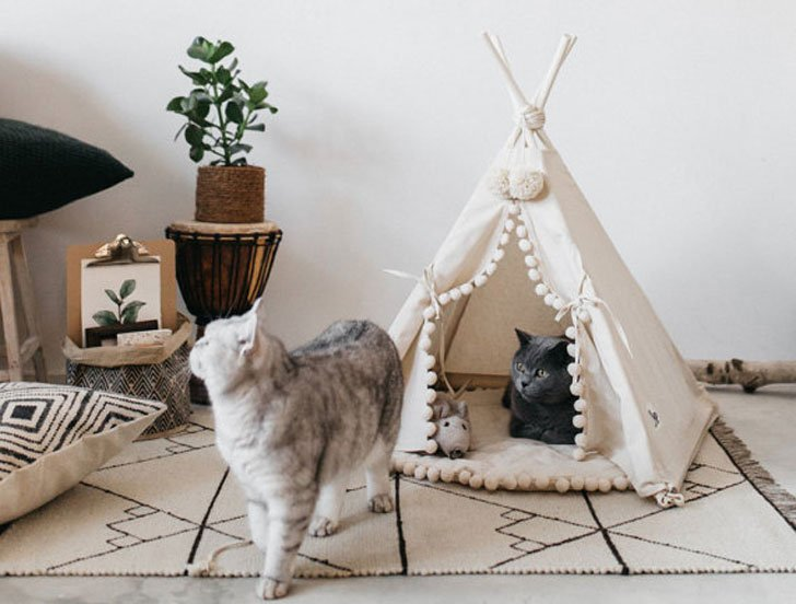 Cat TeePee Bed