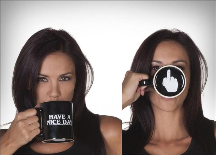 Have a Nice Day Middle Finger Mugs- Funny Coffee Mugs