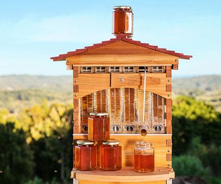 Honey Flow Self-Harvesting Beehives