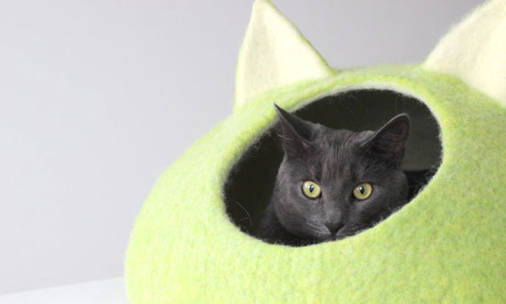 coolest cat beds - cool cat beds