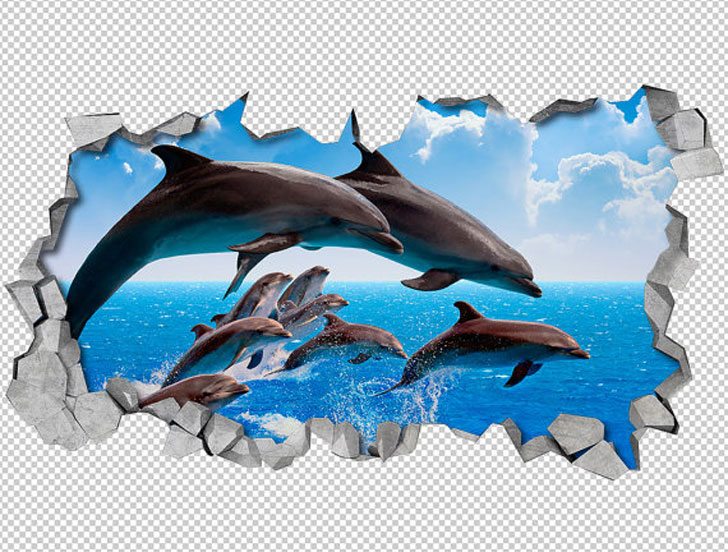 Dolphin Wall Art 3D Decals