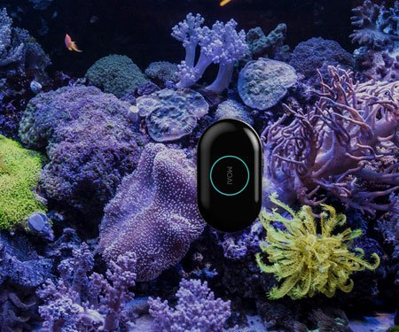 App-Controlled Robotic Aquarium Cleaner