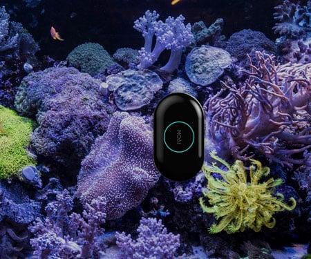 App-Controlled Robotic Aquarium Cleaner