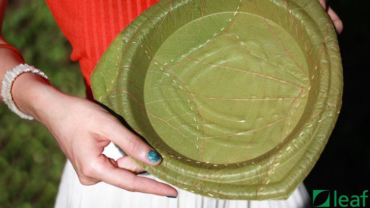 Disposable Leaf Plates