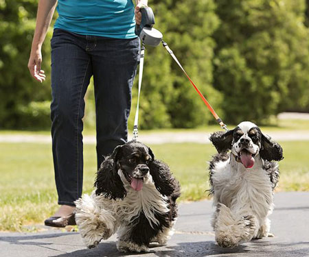 Dual-Controlled Retractable Dog Leash