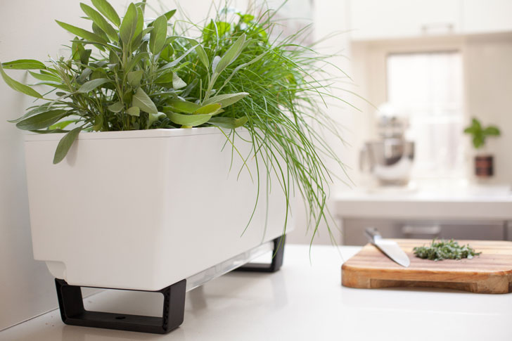 GlowPear Modular Self-Watering Planters