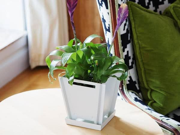 Groovebox Modular Planters