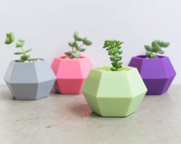 Hexagonal Succulent Planters